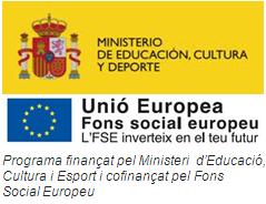 Resultado de imagen de unió fons social europeu